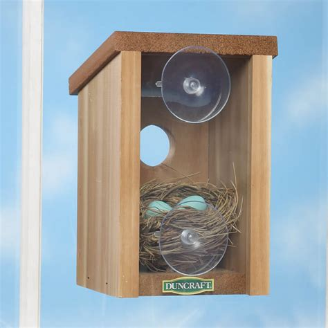 window view bird house duncraft com duncraft 1558 window view bird house