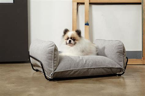 Contemporary Accessories For Your Pet by Modern Beds And Accessories From Howlpot Milk