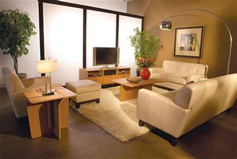 Small Living Room Decor Diy Top Small Living Room Designs Ideas Pictures