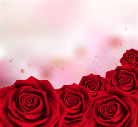 background design red rose red rose with pink background vector 01 vector
