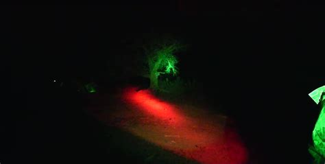 best predator hunting lights a guide to finding the best predator hunting lights