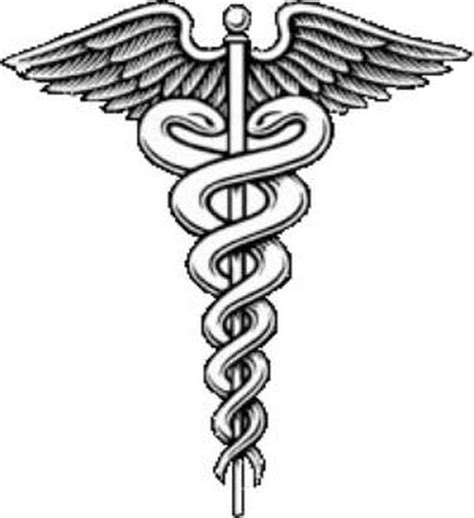 hippocrates oath and asclepius snake the birth of the profession books snakes sacred dogs and the hippocratic oath on the
