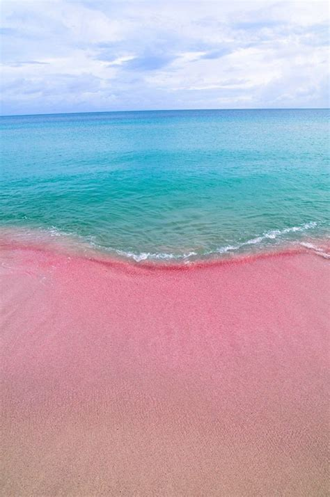 pink sand beach twin island barbuda its pink sand beaches mountains