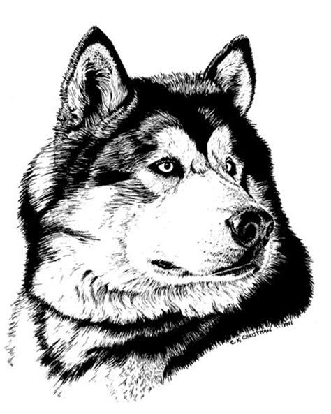 INK ILLUSTRATION - Christman Pet Portraits
