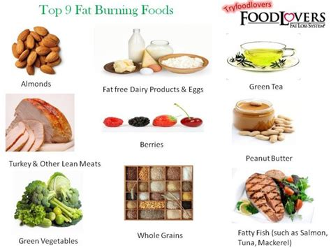 The Best Diet Fats And by Best Burning Foods Best Diet Solutions Program