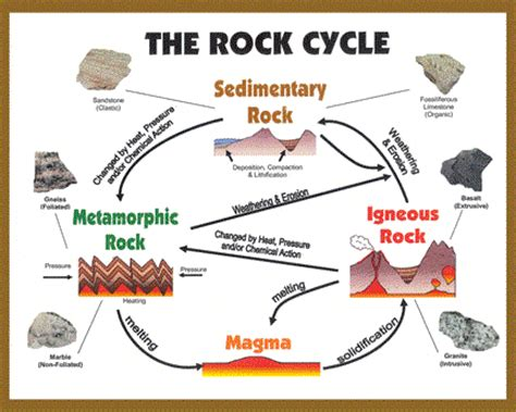 Rock Cycle Worksheet by Home Page Rocksinahardplace
