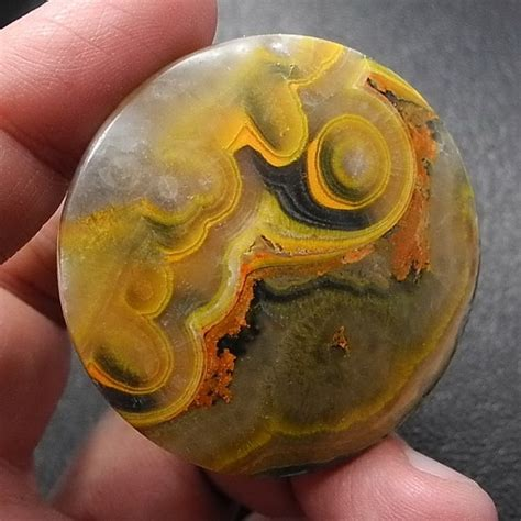 ebay free shipping to indonesia 48 best bumblebee jasper cabs images on pinterest au