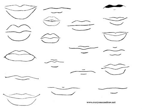 Drawing Mouths by The Gallery For Gt How To Draw Caricature Mouths