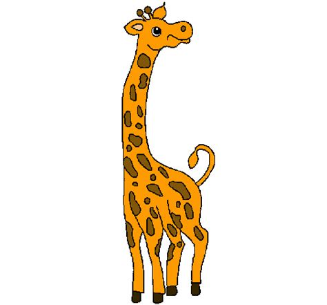 imagenes de jirafas caricaturas image gallery jirafa dibujo
