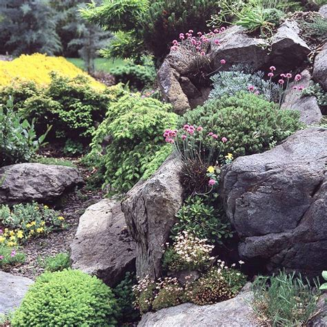 Creating A Rock Garden Creating A Rock Garden Design And Planting It Ideas For Gardeners