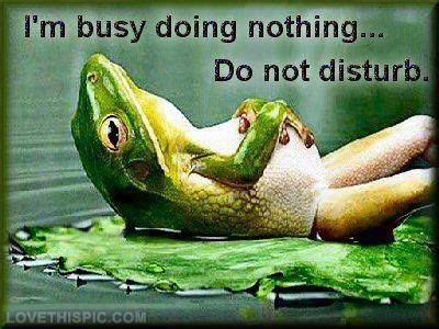 7 Things That Nothing To Do With by Im Busy Doing Nothing Pictures Photos And Images For