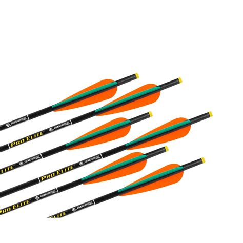 lighted nocks for ravin crossbow pro elite carbon crossbow arrows w omni nocks