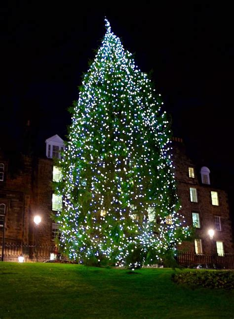 edinburgh the mound christmas tree 2015 edinburgh