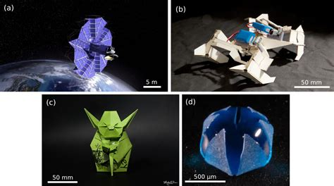 Origami B Cells - how origami could help us reach the third dimension in the