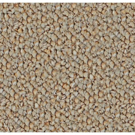 Outdoor Carpets And Rugs Shop Home And Office Sand Textured Indoor Outdoor Carpet At Lowes