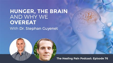 Why Do We Overeat by Hunger The Brain And Why We Overeat With Dr Stephan Guyenet