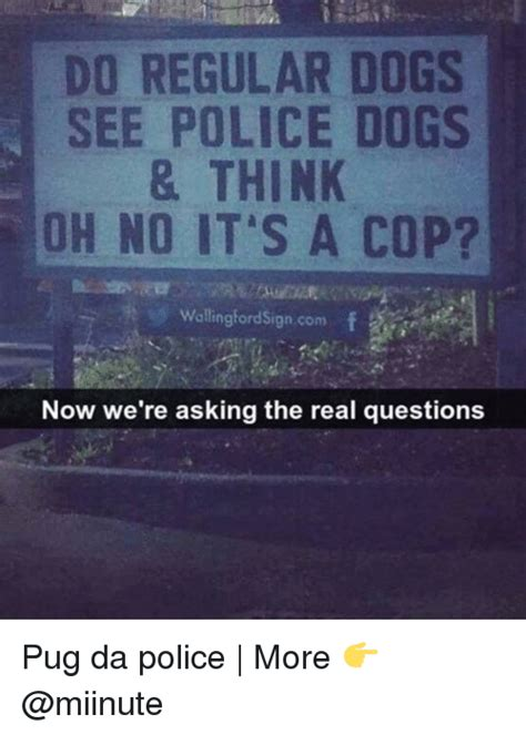 oh no now we know what happened to that missing piece 25 best memes about police dog police dog memes