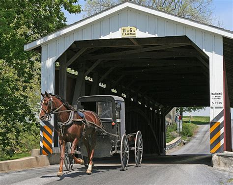 dutch country 41 best images about lancaster pa amish on pinterest