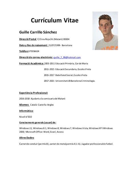curriculum plantilla guille