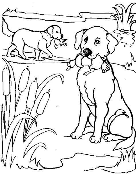 coloring pages of realistic dogs realistic puppy coloring pages www imgkid the