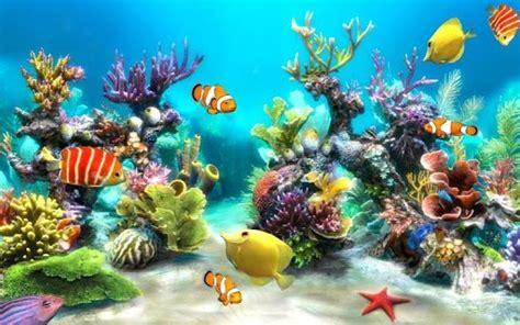 wallpaper animasi bergerak buat pc aquarium wallpaper hidup untuk membuat android anda lebih