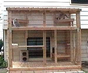 outdoor cat house: outdoor cat house canada