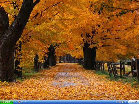 spring of autumn colours of autumn