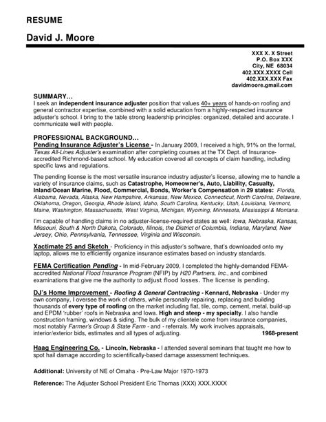 it project manager resume microsoft word resume template
