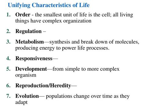 characteristics of biography ppt ppt unifying characteristics of life powerpoint