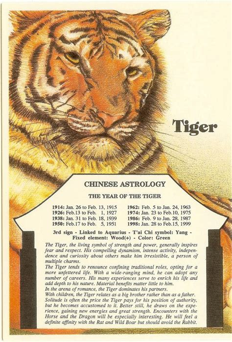 zodiac unlimited chinese astrology postcard tiger