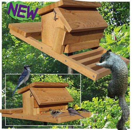 homemade squirrel proof bird feeder plans | feedingnature.com