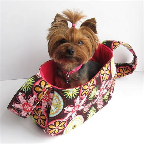yorkie in a bag this haircut for a yorkie misc yorkie haircuts and top knot