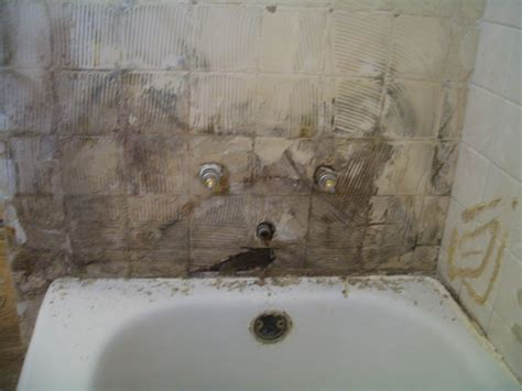 mold on bathroom wall veteran ed s your renovation experts what mold can do to