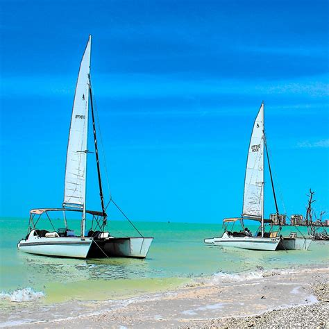 catamaran sailing marco island private marco island boat tour reservations 280 480