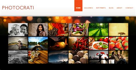 wordpress themes nextgen gallery wordpress nextgen templates best premium wordpress