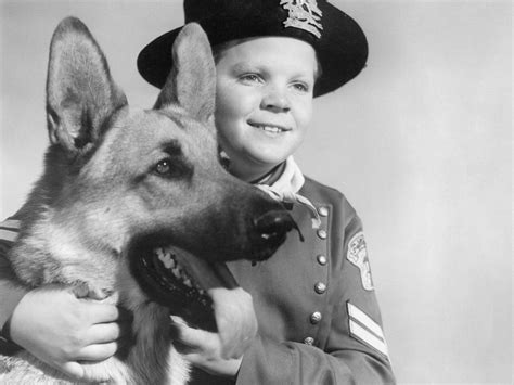 film jadul rintintin rin tin tin and the power of story the extratextual