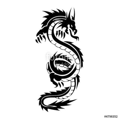 dragon tattoo vector free quot dragon vector tatoo quot stock image and royalty free vector