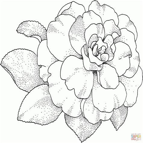 fiori immagini disegni immagini di fiori da colorare