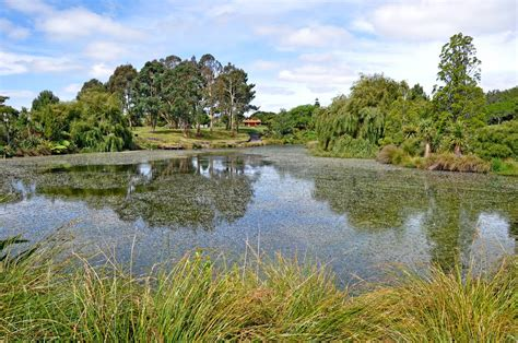 Panoramio Photo Of Auckland Botanical Gardens Manurewa Manurewa Botanical Gardens
