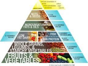 nutrition food pyramide on pinterest food pyramid nutrition and nutrition activities