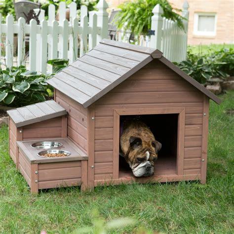 large kennels for outside a frame kennel x large outdoor boarding wood shelter storage cage pet feeder ebay
