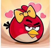 De Angry Birds Para Descargar