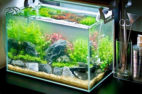 Jual Lu Aquarium T5 harga lu t5 untuk aquascape l ideas