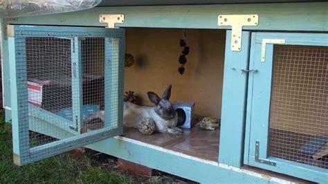 Custom Rabbit Hutch Rabbit Hutch Tour December Youtube