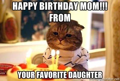 Cat Mom Meme - funny happy birthday cat meme 2happybirthday