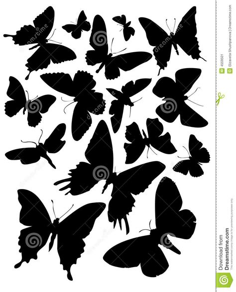 chagne silhouette fifteen butterfly silhouettes stock image image 4559501