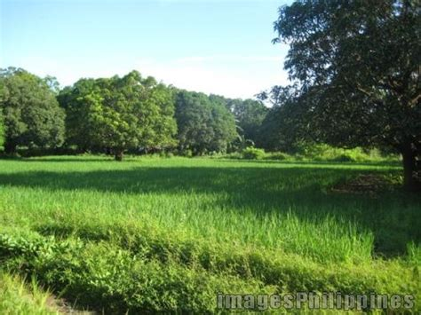Bukid Place Taken Zambales Philippines Images Pictures
