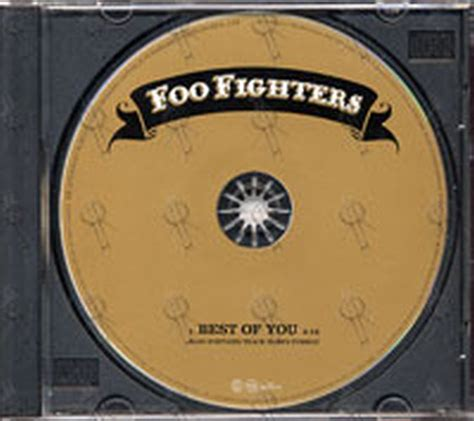 the best of you foo fighters foo fighters best of you album cd records