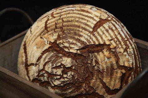 Bread N Budy bernd s bakery quot pfundskerl quot 80 roggen quot buddy quot 80 rye