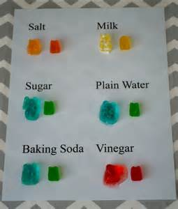 Salt And Light Lyrics Gummy Bear Lab Pictures To Pin On Pinterest Pinsdaddy